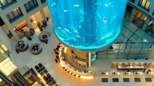 Aquadom, Ascensor Dentro De Un Acuario